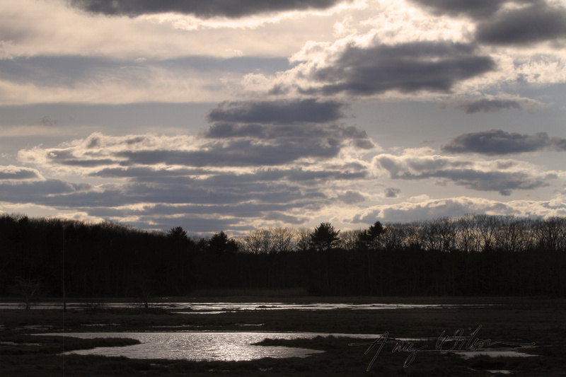 Amy Wilson Photography   Rye Tidal Marsh at Sunset   NH Landscape